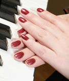 Hands of a woman playing piano Royalty Free Stock Images
