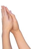 Hands of a woman during prayer Royalty Free Stock Photography