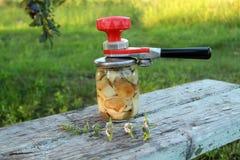 Hands woman rolls a jar of mushrooms. Sealing key Royalty Free Stock Images
