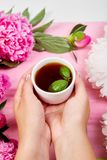 Hands of women and keep a cup of tea. royalty free stock photos