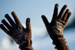 Hands with woolen gloves royalty free stock images