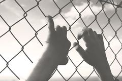 Hands of a young man who cling to the hope of freedom beyond a wire mesh
