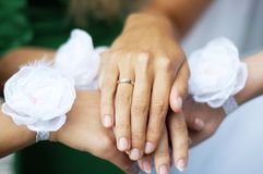 Hands of young bridesmaids with white flowers on the wrists and. Hand of bride with golden ring on the finger Stock Images