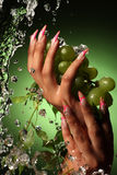 Hands of a young girl with a nice manicure Stock Photography