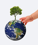 Hands, the young sprout and our planet Earth Stock Image