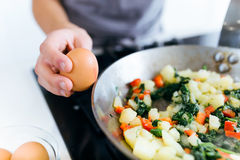 Hands of a young woman adding egg to vegetables into the pan. Royalty Free Stock Photography
