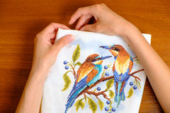 Hands of a young woman embroidering cross picture Royalty Free Stock Photos