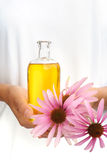 Hands of young woman holding essential oil and fresh coneflowers Royalty Free Stock Images