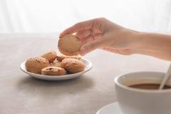 Handsammelnplätzchen von der Platte Getränk mit Koffein oder Kakao mit Milch lizenzfreie stockfotografie