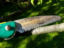 Handsaw Royalty Free Stock Images