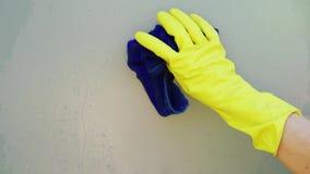 handschoen stock videobeelden