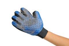 Handschoen voor het opnemen van wol Stock Foto's