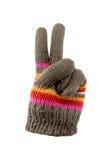 Handschoenen met vredesteken Stock Fotografie