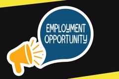 Handschriftstext Beschäftigungsmöglichkeit Konzept, das keine Diskriminierung gegen Bewerber-Gleichgestellt-Politik bedeutet vektor abbildung