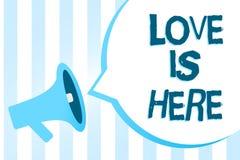 Handschriftstext-Schreiben Liebe ist hier Konzept, das romantisches reizendes Gefühl des Gefühls positive Ausdruck-Sorgfalt Joy M lizenzfreie abbildung