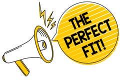 Handschrifttekst de Perfecte Pasvorm De het Raadselstukken die van de conceptenbetekenis de Goede Integratie van de groepswerkver vector illustratie