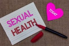 Handschrifttekst die Seksuele Gezondheid schrijven Concept die Gezonder lichaam betekenen die Seksuele het Stuknoteboo tevredenst royalty-vrije stock foto's