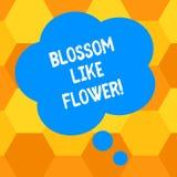 Handschrifttekst het schrijven Bloesem zoals Bloem Concept het betekenen plant of boom die de zaden of de fruitspatie zal vormen stock illustratie