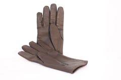 Handschuh lizenzfreies stockfoto