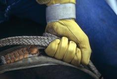 Handschuh des ergreifenden Seils des Rodeocowboys Stockfoto