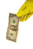 Handschuh-Holding-Dollar lizenzfreie stockbilder