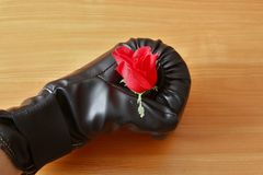 Handschuh mit stieg stockfoto
