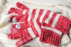 Handschuh- und Wollstrickjacke des Winterbildschirm- Stockbilder