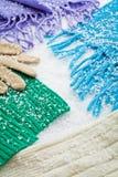 Handschuhe und Schals der Wollen über dem Schnee stockfotos