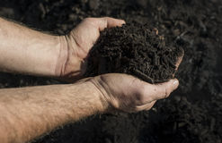 Handsfull av kompost Royaltyfri Foto