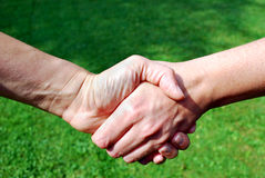 Handshake Royalty Free Stock Image