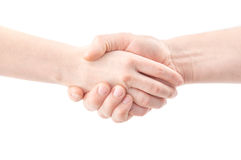 Handshake. Isolated on white background Royalty Free Stock Image