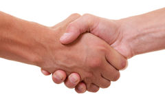 Handshake. Friendly handshake on white background royalty free stock image