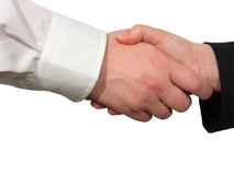 Handshake. A man and a woman shake their hands royalty free stock images