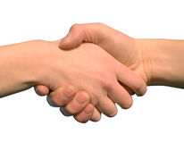 Handshake. A handshake isolated on a white background royalty free stock images
