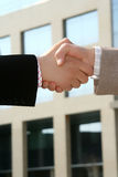 Handshake. Two businessmen shaking hands after agreement about a job Royalty Free Stock Photos