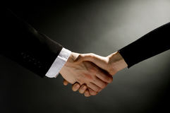 Handshake. Business people making partner handshake