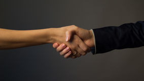handshake obrazy royalty free