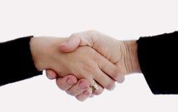 Handshake. Isolated hands on white background stock image