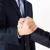 Handshake business Royalty Free Stock Image