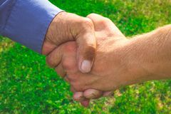 Handshake of business partners. Worklife. Business. Meeting farmers on green background Stock Photo