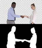 Handshake of business woman and business man posing for the picture, Alpha Channel royalty free stock photos