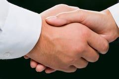 Handshake close-up Stock Image