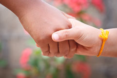 Handshake. Stock Image