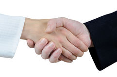 Handshake concept Royalty Free Stock Photo