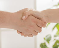 Handshake with doctor and patient. Closeup of businessman and doctor shaking hand's in office Stock Photography