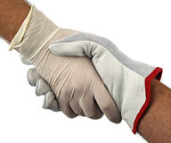 Handshake doctor and worker Royalty Free Stock Photo