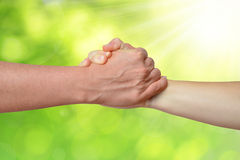 Handshake of friendship Stock Image