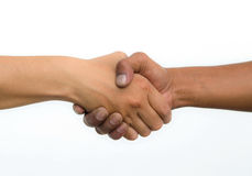 Handshake of friendship. Isolated on white background royalty free stock image