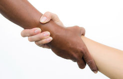 Handshake of friendship. Isolated on white background stock image