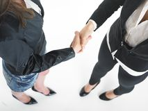 Handshake Handshaking of two business woman Royalty Free Stock Image